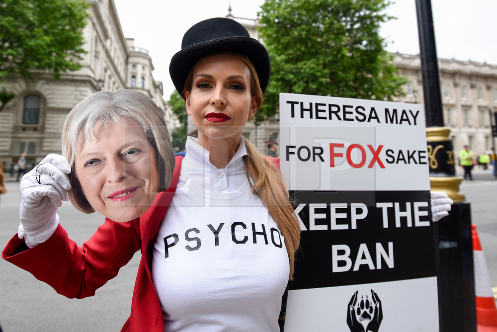 "© Licensed to London News Pictures. 29/05/2017. London UK. TV wildlife presenter Anneka Svenska joins demonstrators in an ""Anti-Hunting March"" in central London, marching from Cavendish Square to outside Downing Street.  Protesters are demanding that the ban on fox hunting remains, contrary to reported comments by Theresa May, Prime Minister, that the 2004 Hunting Act could be repealed after the General Election.<br />  Photo credit : Stephen Chung/LNP"