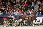 Lambertus Huckriede - Eebert<br /> Oregon Trofee<br /> KWPN Hengstenkeuring 2016<br /> © DigiShots