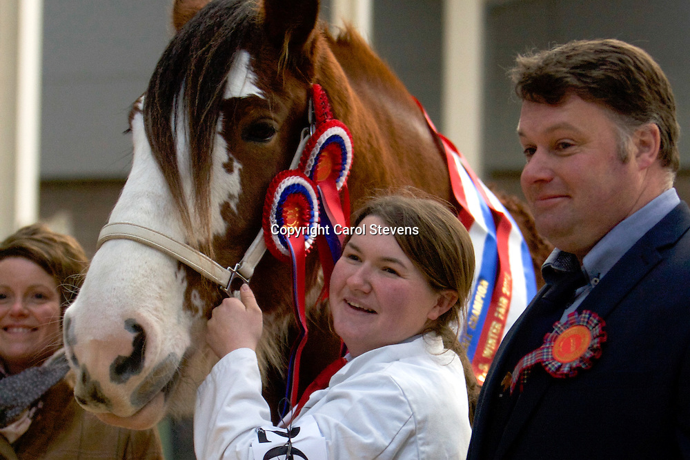 Charlotte Young with her own FORNETH LUCKY DAISY<br />