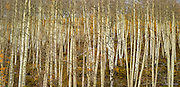 Wasatch Range, Utah<br />