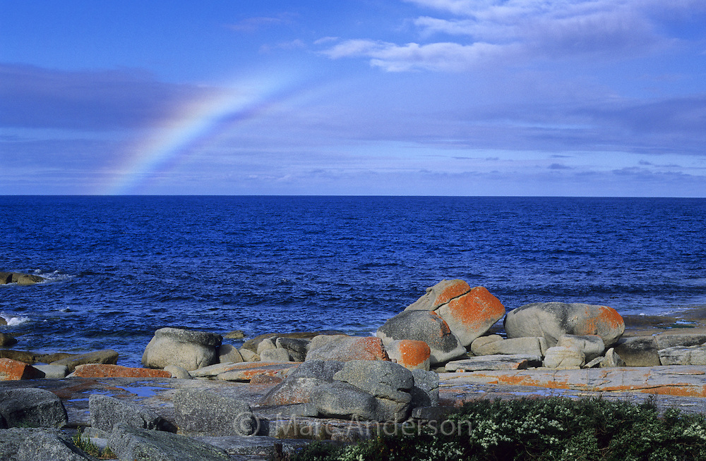 Rainbow over the sea & coastline with orange lichen covered rocks, Bicheno, Tasmania