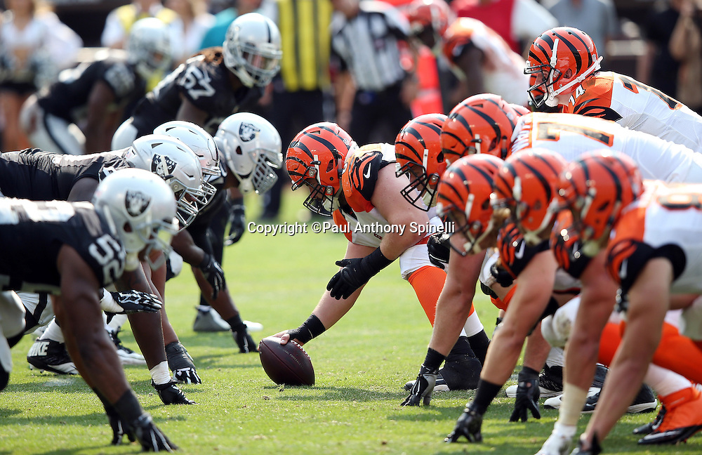 The Cincinnati Bengals offensive line gets set to snap the ball at the line of scrimmage opposite the Oakland Raiders defensive line during the 2015 NFL week 1 regular season football game against the Oakland Raiders on Sunday, Sept. 13, 2015 in Oakland, Calif. The Bengals won the game 33-13. (©Paul Anthony Spinelli)