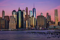 Lower Manhattan Skyline @ Dawn