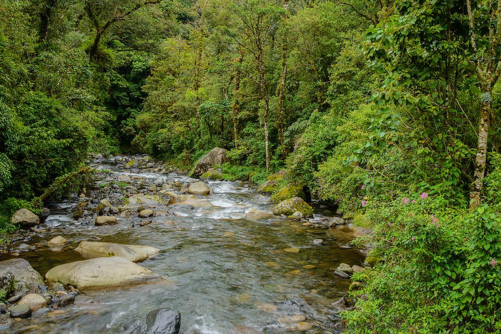 Rio Caldera River above Boquete, Panama