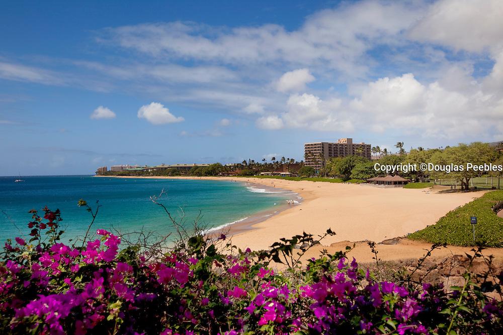 Kaanapali Beach, Kaanapali. Maui, Hawaii