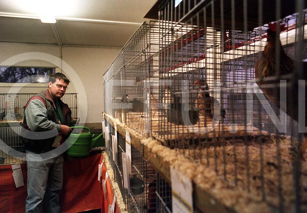 dedemsvaart : kleindierenshow voerderen..foto frank uijlenbroek¨1995