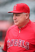 ANAHEIM, CA - APRIL 14:  Mike Scioscia #14 of the Los Angeles Angels of Anaheim looks on as he does an interview before the game against the Houston Astros on Sunday, April 14, 2013 at Angel Stadium in Anaheim, California. The Angels won the game 4-1. (Photo by Paul Spinelli/MLB Photos via Getty Images) *** Local Caption *** Mike Scioscia