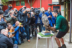 ZSL London, August 26th 2015. Members of the press crowd round as Zookeeper Grant Kother weighs 1.9kg Eagle Owl named Max as ZSL London holds its annual weigh-in of  animals.
