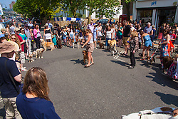 Primrose Hill, London, May 18th 2014. Competitors demonstrate their dogs' skills at the Primrose Hill Fair dog show as Londoners enjoy the hottest day of the year so far.