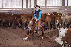 April 29 2017 - Minshall Farm Cutting 1, held at Minshall Farms, Hillsburgh Ontario. The event was put on by the Ontario Cutting Horse Association. Riding in the 25,000 Novice Horse Non-Pro Class is Scott Reed on LL CRockett Rocket owned by the rider.