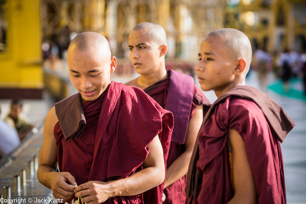 07 JUNE 2014 - YANGON, YANGON REGION, MYANMAR:  Monks at Shwedagon Pagoda in Yangon (Rangoon), Myanmar (Burma). Shwedagon Pagoda is officially called Shwedagon Zedi Daw and is also known as the Great Dagon Pagoda and the Golden Pagoda. It's a 99 metres (325ft) gilded pagoda and stupa located in Yangon. It is the most sacred Buddhist pagoda in Myanmar with relics of the past four Buddhas enshrined within: the staff of Kakusandha, the water filter of Koṇāgamana, a piece of the robe of Kassapa and eight strands of hair from Gautama, the historical Buddha.  PHOTO BY JACK KURTZ