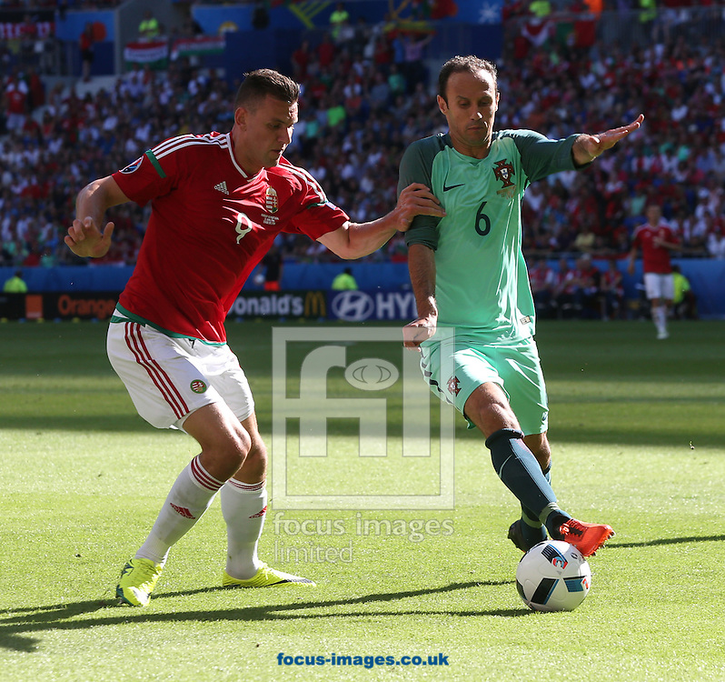 Adam Szalai of Hungary and Ricardo Carvalho of Portugal during the UEFA Euro 2016 match at Stade de Lyons, Lyons<br /> Picture by Paul Chesterton/Focus Images Ltd +44 7904 640267<br /> 22/06/2016