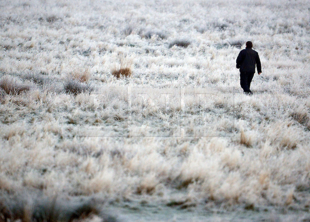 © Licensed to London News Pictures. 02/12/2012. Richmond, UK A couple walk through the heavy frost this morning. Deer, joggers and dog walkers wake up to a golden frosty morning in Richmond Park, Surrey, today 2nd December 2012. Photo credit : Stephen Simpson/LNP