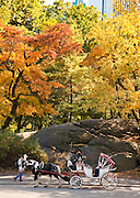Autumn colors in Central Park in New York City.