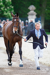 Hefferman Andrew, (NED), Boleybawn Ace<br /> First Horse Inspection<br /> Mitsubishi Motors Badminton Horse Trials - Badminton 2015<br /> © Hippo Foto - Libby Law<br /> 06/05/15