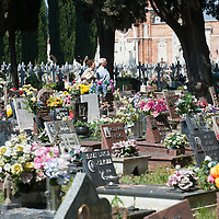 Venice the Cemetery of S Michele.