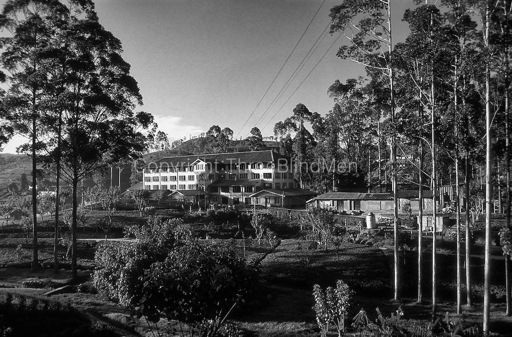 The Somerset Tea Factory a few miles outside Nuwara Eliya.