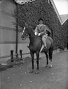 04/08/1953<br /> 08/04/1953 <br /> 4 August 1953<br /> <br /> Nellie Mulcahy  special at RDS Horse Show and Rathmines, Special for Ita Hynes