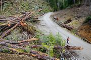 Angler walking Vancouver Island logging road beside clear cut.
