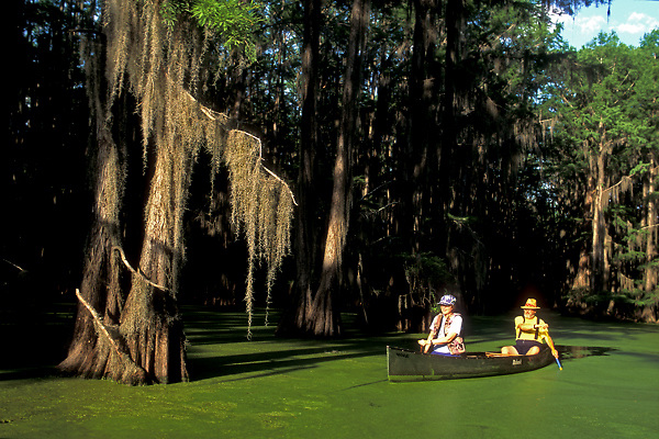 Stock photo of a couple in a canoe on a mossy lake