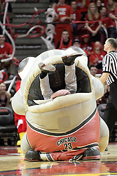 05 December 2015: Zooperstar Mackerel Jordan takes the court teasing an on floor staffer with a ball, but the play turns for the staffer who eventually gets consumed by Mackerel only to have his clothing spit out just before he is spit out with nothing but a pair of shite boxers with little red hearts covering his bottom. Illinois State Redbirds host the University of Alabama - Birmingham Blazers at Redbird Arena in Normal Illinois (Photo by Alan Look)