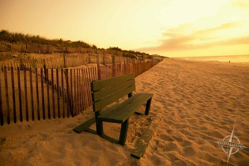 Sand Dunes with Dune Fencing, Bench