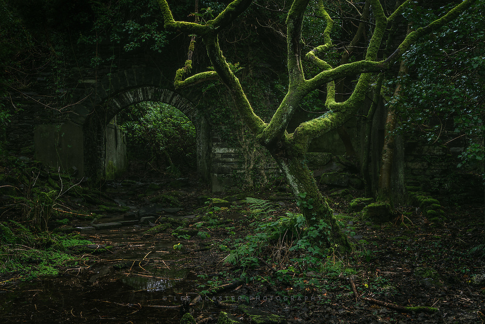 I absolutely loved the overgrown ruins at Dorothea quarry, very hard to convey the atmosphere in an image though, and Im not sure Im quite where I want it to be with this so it may come down again when I see it again in the cold light of day