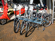 New bicycles for sale Katwijk, Holland