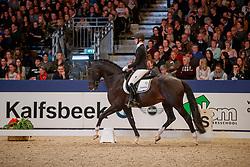 Nekeman Denise, NED, I'm Perfect STH<br /> KWPN Stallionshow - 's Hertogenbosch 2018<br /> © Hippo Foto - Dirk Caremans<br /> 02/02/2018