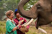 Patara Elephant Farm, Chiang Mai, Thailand: visitor feeding banana to elephant.
