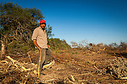 2014/11/23 – Quimili, Argentina: Raúl Eduardo Leal (56), a member of the Guaycurú Indigenous Community of Bajo Hondo, shows parts of the deforestation around his community. He told that in a few weeks all that forest will be replaced by more cultivation fields. The region around Quimili on the Santiago Estero Province is being vastly converted from forestland into fields to produce soy, detroying the habitats for local species and indigenous people. (Eduardo Leal)