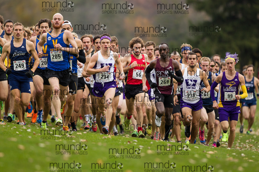 Chris Balestrini of the Western Mustangs runs in the men's  10K Run at the 2013 CIS Cross Country Championships in London Ontario, Saturday,  November 9, 2013.<br /> Mundo Sport Images/ Julie Robins