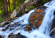 A waterfall in the Wheeler Peak Wilderness, near Taos, New Mexico.