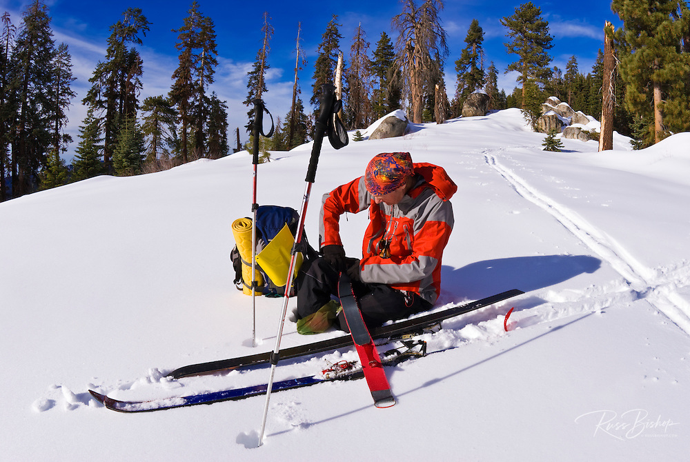 Backcountry skier removing climbing skins on Panther Peak, Sequoia National Park, California