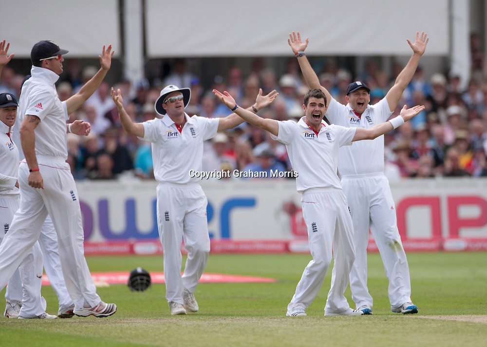 Bowler James Anderson appeals in vain for the caught behind of VVS Laxman during the second npower Test Match between England and India at Trent Bridge, Nottingham.  Photo: Graham Morris (Tel: +44(0)20 8969 4192 Email: sales@cricketpix.com) 30/07/11