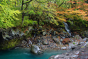 Autumn colors are starting to show in trees on the margins of Daiyagawa river, in Kanmangafuchi Abyss, Nikko, Japan