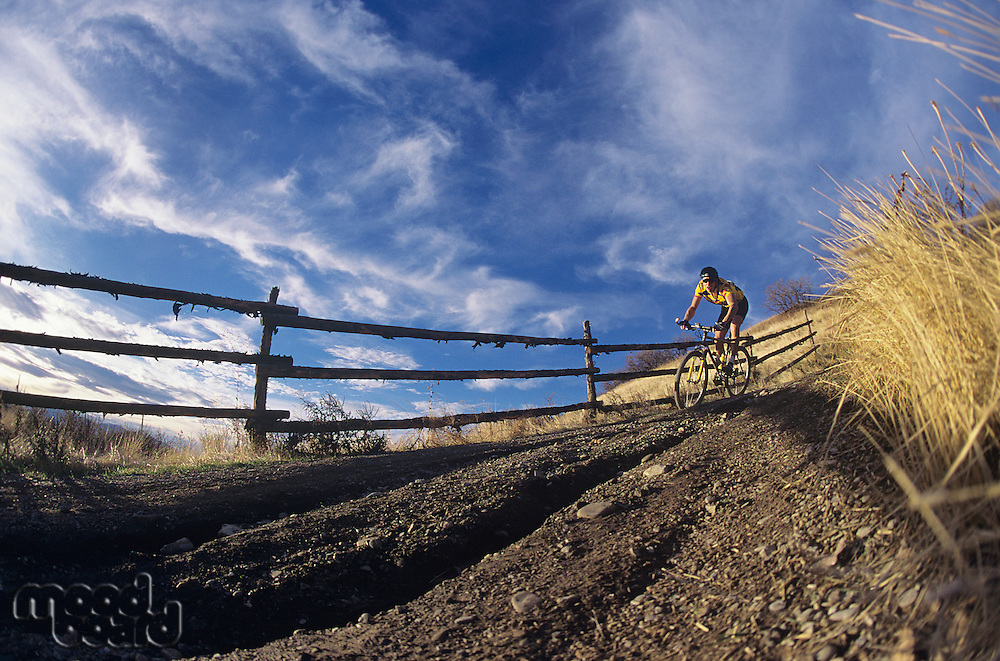 Man mountain biking along path
