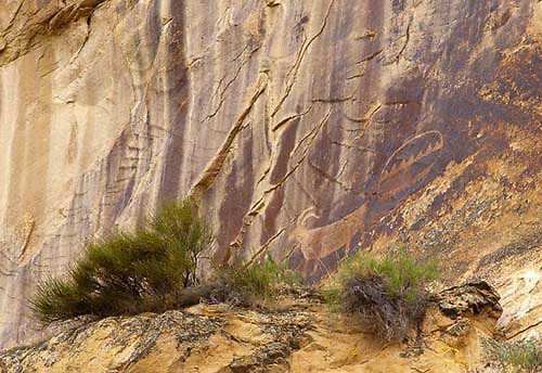 Echo Park Petroglyphs, Dinosaur National Monument, Colorado