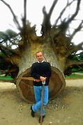 Head gardener near fallen tree at the Palace of Versailles, France