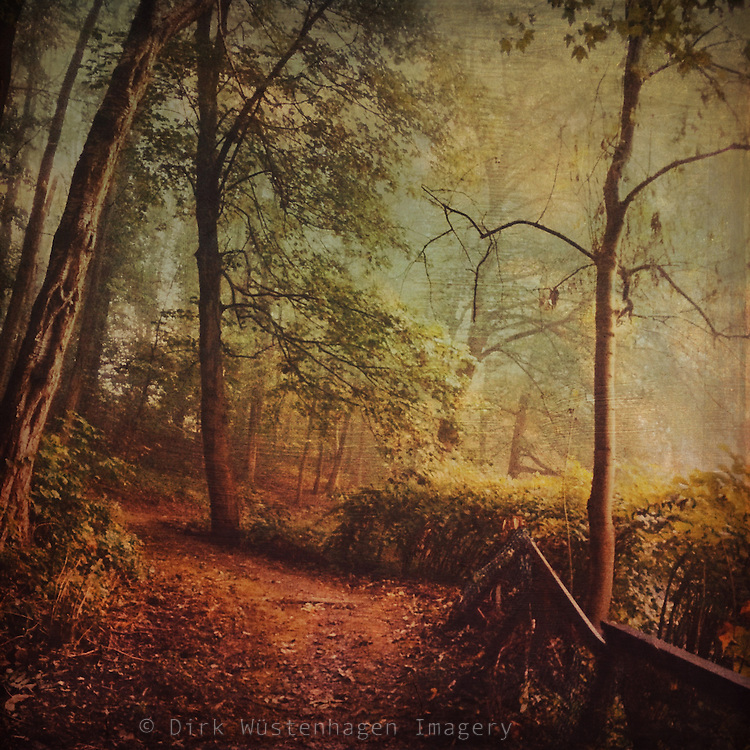 Forest path in romantic lighting- edited with Stackables using my textures