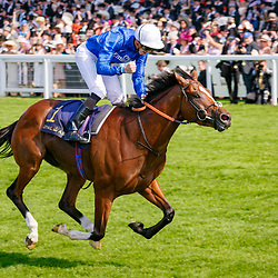 Barney Roy (J. Doyle) (white cap) wins Gr.1 St James's Palace Stakes, Ascot 20/06/2017, photo: Zuzanna Lupa / Racingfotos.com