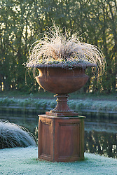 Terracotta urn on plinth on a frosty winter's morning. Carex comans 'Bronze form'