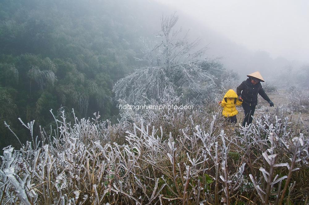 Vietnam Images-phong cảnh sapa-landscape Hoàng thế Nhiệm