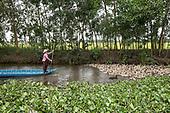 Vietnam: A Damaged Delta