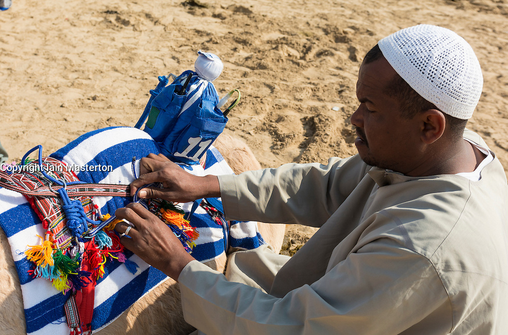 Man attaching remote controlled robot jockey at camel racing club at Al Marmoum outside Dubai  in United Arab Emirates