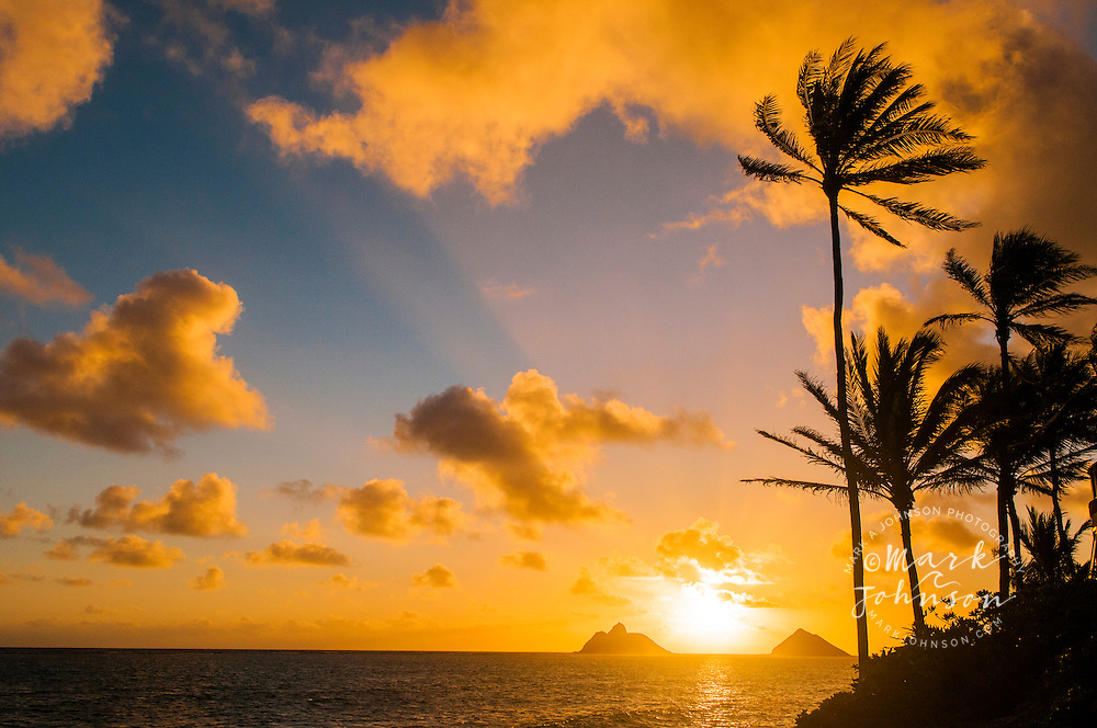 Sunrise, Mokulua Islands, Lanikai Beach, Kailua, Oahu, Hawaii, USA