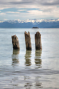 three broken wood piles in Lake Constance, view of the Santis.