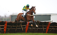 Plumpton, UK. 12th December 2016. <br /> Templier ridden by Jamie Moore clear the final fence to land  the J H Builders Novices&acute; Hurdle<br /> &copy; Telephoto Images / Alamy Live News