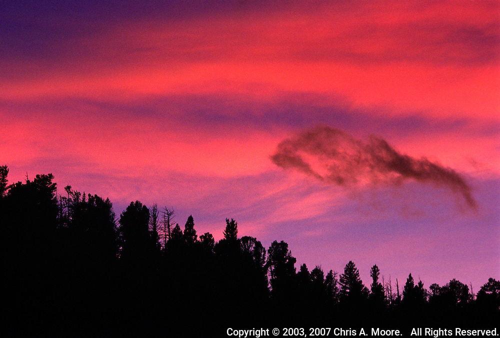 A dark ridge of evergreens is silhouetted by the bright orange, magenta, and blue of the sunset near Conifer, Colorado, January 2003.