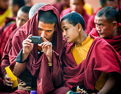 Jan. 14, 2013 - Bodh Gaya, Bihar, India - TIBETAN BUDDHISM IN EXILE..Tibetan Buddhist monks share a moment to look at a cell phone while on pilgrimage in Bodh Gaya, India. A religious site, Mahabodhi Temple Complex is a UNESCO World Heritage Site in Gaya district in the Indian state of Bihar., where Gautama Buddha was enlightened under the Bodi tree...Story Summary: Tibetan Buddhism is alive and well, outside of Tibet. The religion and culture of the Tibetan people is flourishing in communities around the world as exiled Tibetan spiritual leader the Dalai Lama has indicated ‰Û÷would not have happened this way if China had not scattered his people to the wind.‰Ûª After the Chinese communists invaded Tibet and severely oppressed the its people, thousands of refugees, including the Dalai Lama, fled their homeland for places such as Dharamsala, India, where many live with the Tibetan Government in exile along with, Bodhgaya, India and Kathmandu, Nepal. The culture is strong with new refugees breathing life into the old ways. Northern India is where the Buddha began his journey of enlightenment and is where much of this form of Buddhist teachings have taken hold. (Credit Image: © Eric Reed/ZUMAPRESS.com)